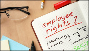 employment law attorneys